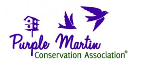 purple_martin_logo
