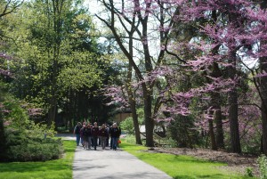 Spring Tour Group with Redbud Trees