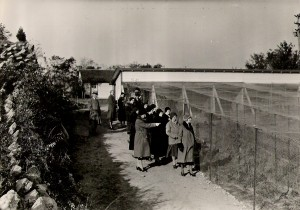1930's group of people at Pheasant Pens by root cellar