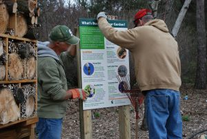 Volunteers installing the Native bee signage