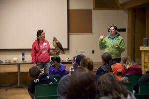 Bird Sanctuary staff show ambassador birds of prey to visitors