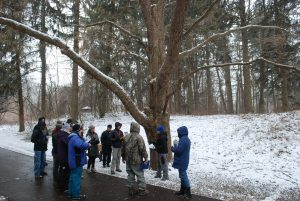 A group of learners at last year's Winter Tree ID workshop