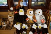 Plush Eagle, Owls, and Fox toys