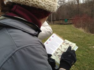 Sanctuary visitor using identification guide in the field