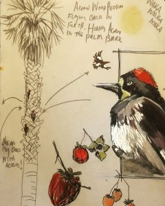 Example of nature sketch of birds and trees