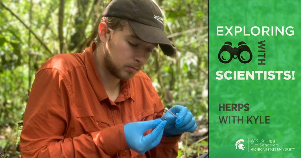 Kyle Jaynes sits in a forested area, looking down at a small object in his hands. Text overlay reads Exploring with Scientists! Herps with Kyle.