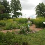 2014 - Pollinator Garden